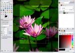 GIMP Free Photo Editing Software Screenshot