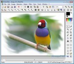 Photofiltre Free Photo Editing Software Screenshot
