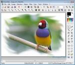 Photofiltre Free Photo Editing Software Screenshot