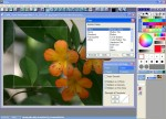 Pixia Free Photo Editing Software Screenshot