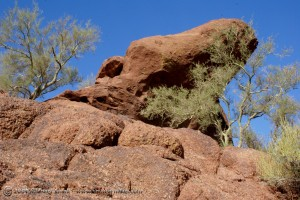 Camelback Mountain Photography