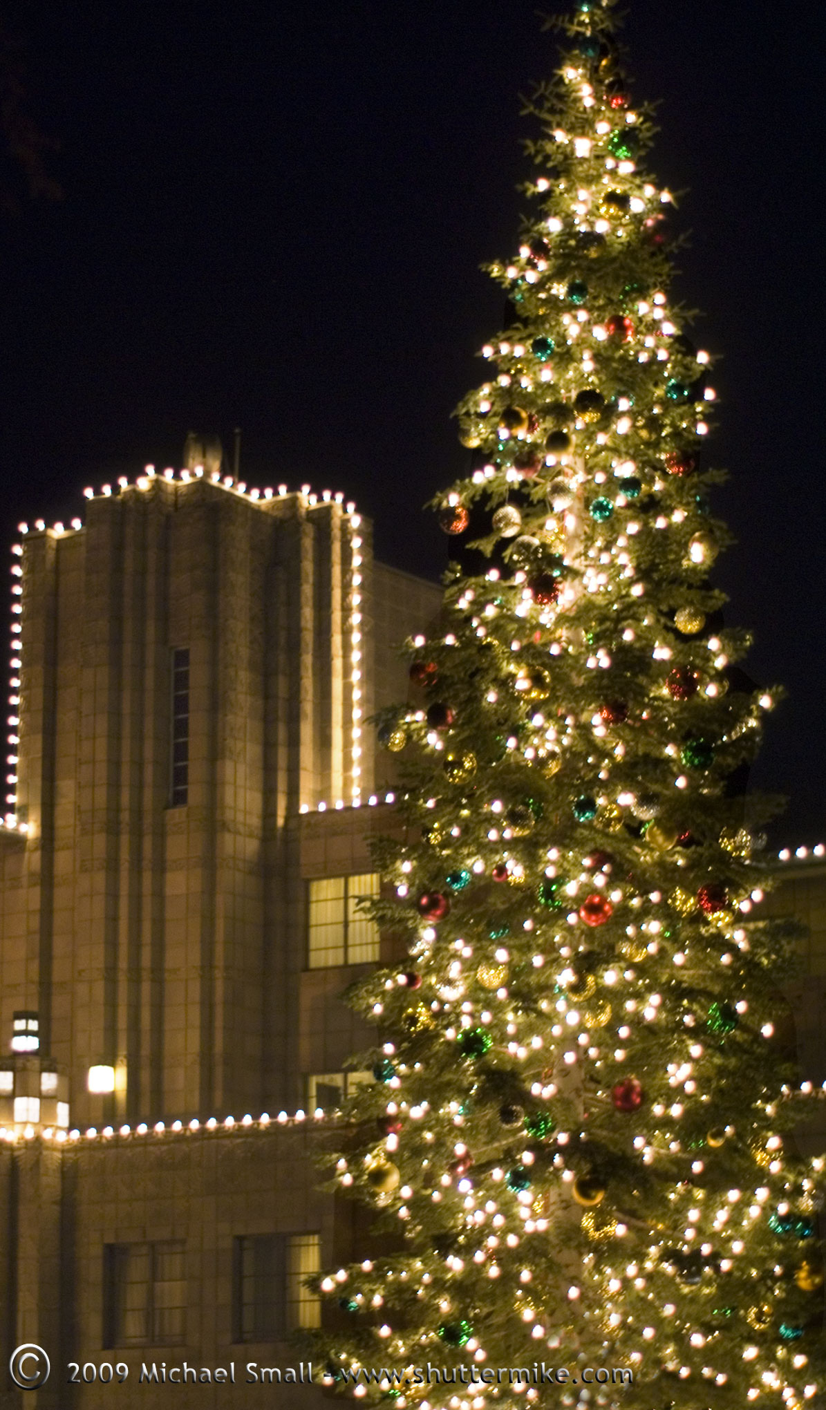 photo of christmas tree at arizona biltmore hotel