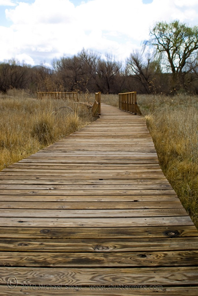 Photo of a boardwalk in Arivaca Cienega Arizona