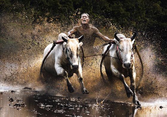 Sony World Photography Open Winner Chan Kwok Hung
