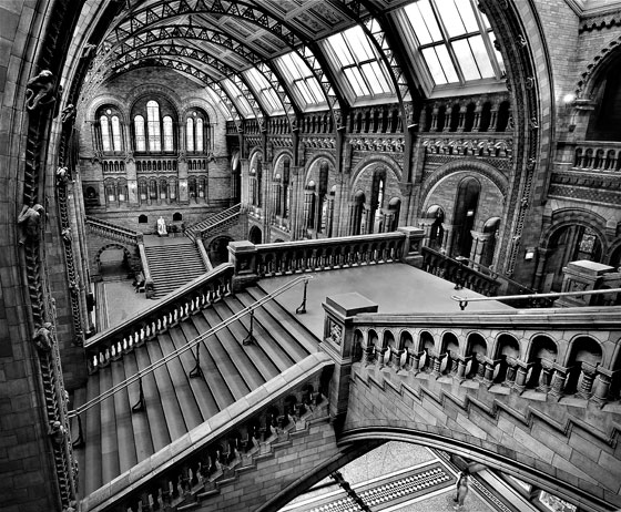 Sony World Photography Winner in the architecture category