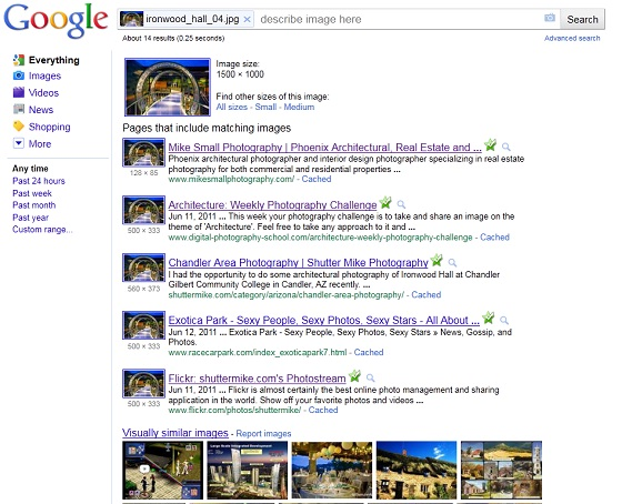 Screen shot of Google's reverse image search results