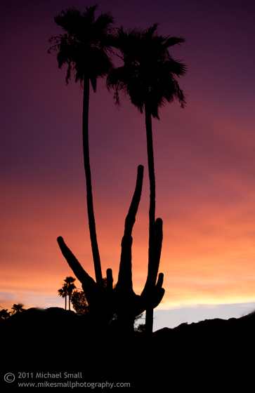 Photograph of an Arizonaa Sunset