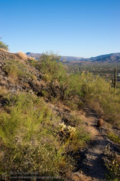 Photo of the hiking trail up Black Mountain in Arizona