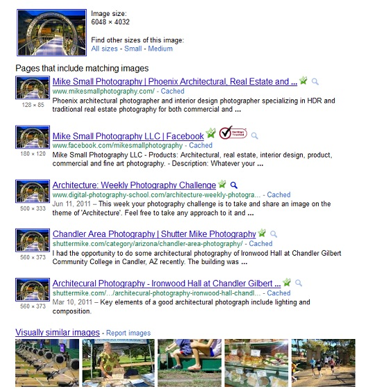 Screen shot of Google's reverse image search results page