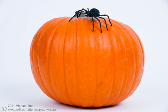 Photgraph of a pumpkin with a spider