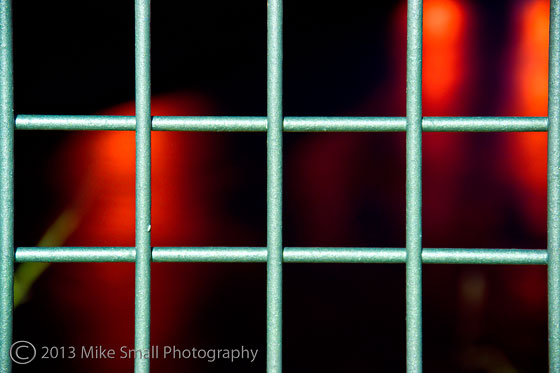 Caging the Darkness